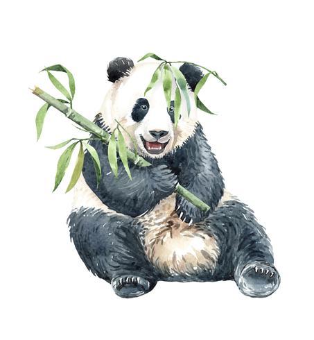 Panda em aquarela com bambu vetor