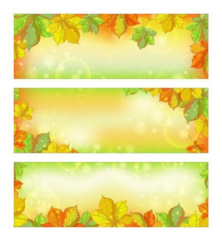 Conjunto de banners horizontais de outono com folhas de castanheiro caídas vetor