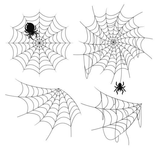 Teia de aranha velha e rasgada vetor