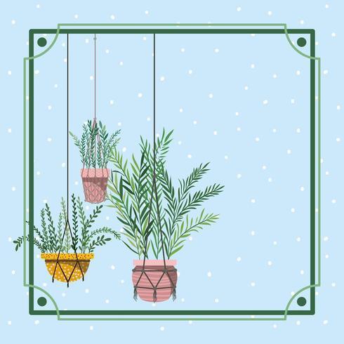 quadro com plantas penduradas em macrame vetor