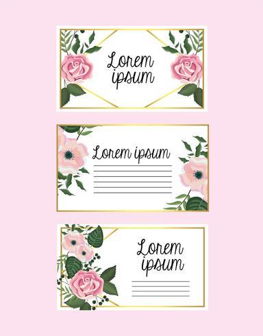 conjunto de cartões com flores e rosas com galhos de folhas vetor
