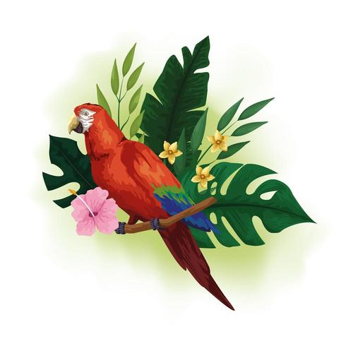Pássaro vermelho exótico e desenho de flores tropicais vetor