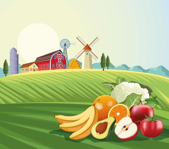 Frutas e legumes sobre o cenário de paisagem de fazenda vetor