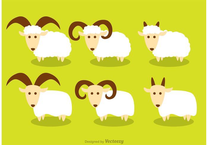 Vetores de ovelha Horned