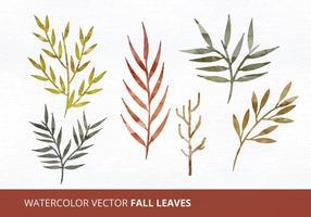 Folhas de vetor de aquarela