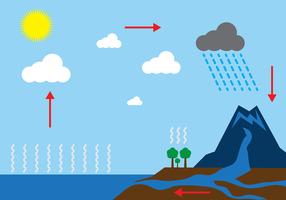 Vector de Diagrama de Ciclo de Água Livre