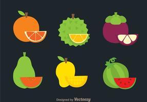 Ícones de frutas tropicais vetor