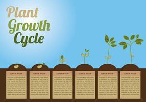 Vetor de círculo de crescimento de plantas