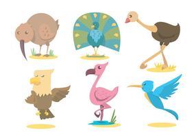 Conjunto de vetores de pássaros exóticos