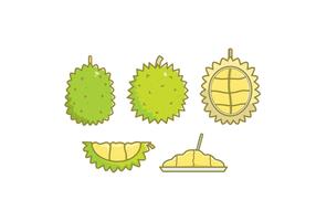 Ilustrações vetoriais do Durian gratuitas vetor