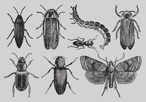 Bugs de desenho de estilo antigo vetor