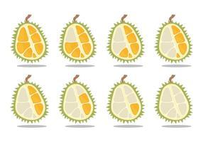 Durian comem lapso de tempo vetor