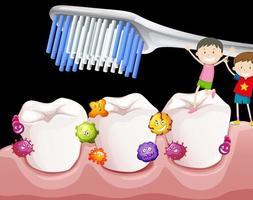 meninos escovando os dentes com bactérias vetor