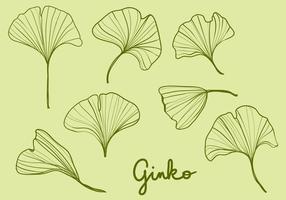Folhas de Ginko desenhadas à mão vetor