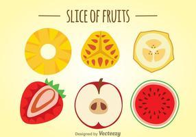 Fatia de frutas definida vetor
