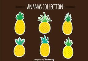 Coleção de vetores Ananas de abacaxi