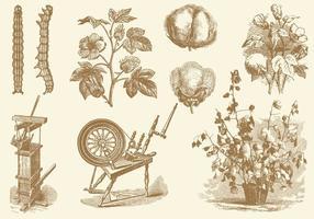 Vetores de desenho de estilo antigo de algodão