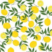 padrão de limão amarelo vetor