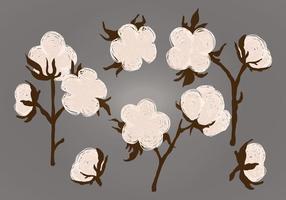 Ilustração vetorial de plantas de algodão vetor