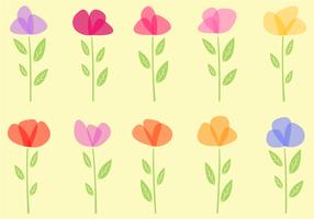 Vector de flores grátis