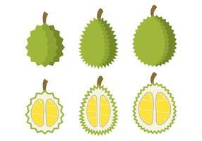 Vetor de Durian