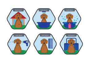 Vector de lavagem de cachorro