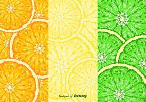 Vector de padrões de fatias de frutas