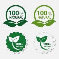 conjunto de etiqueta 100% natural ecológico vetor