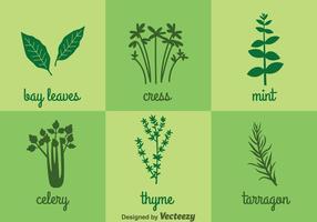 Ícones de ervas e especiarias vetor