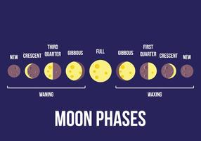 Vetor da fase da lua