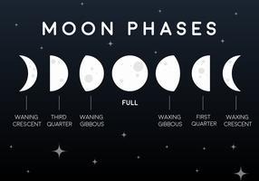 Ícones das fases da lua plana do vetor