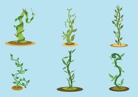 O Beanstalk Vector