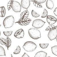 padrão sem emenda desenhada de mão de limão vetor