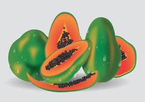 Vector de frutas frescas