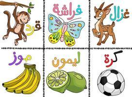 Doodle alfabeto árabe de estilo e conjunto de frutas vetor