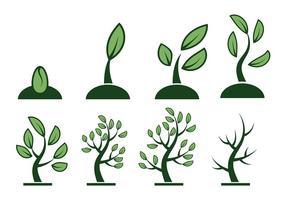 Vector crescer livre