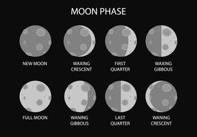 Vetor livre da fase lunar