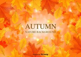 Folhas de vetores de fundo de outono