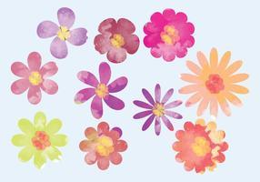 Elementos florais brilhantes da flor da aguarela do vetor