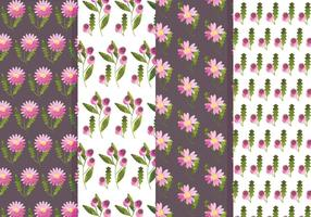 Conjunto de padrões de flor vetorial e rosa marinho vetor