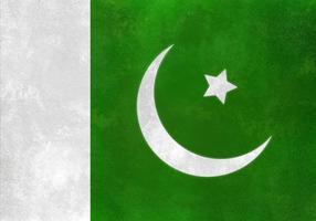 Bandeira livre do Paquistão do vetor na textura da aguarela