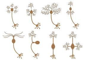 Conjunto de vetor de neurônio