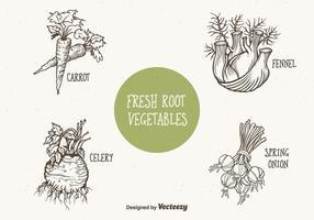 Vetor de legumes de raízes desenhados por Doodle