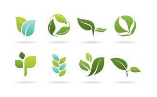 Logos de folhas vetor