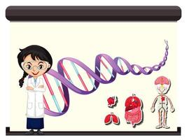 cientista com diagrama de dna humano vetor