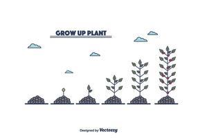 Cresce o vetor da planta
