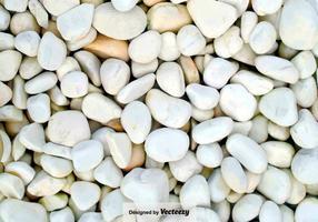 Pebble-stone caminho close up - fundo do vetor