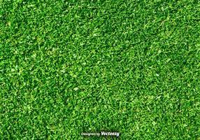 Natureza do gramado - fundo do vetor grama verde