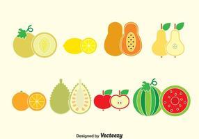 Vector de coleção de frutas