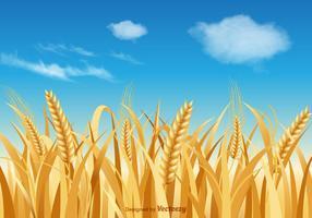 Paisagem livre do vetor do talo de trigo